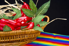 Basket Red Peppers Royalty Free Stock Images