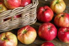 Basket with red ripe apples Stock Photos