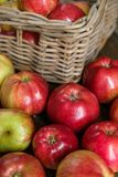Basket with red ripe apples Royalty Free Stock Photos