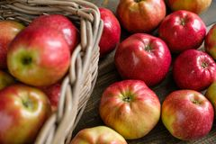 Basket with red ripe apples Royalty Free Stock Photo