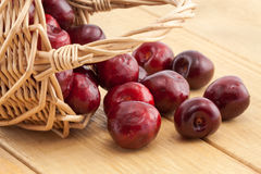 Basket with red ripe cherries Royalty Free Stock Photos