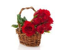 Basket red roses Royalty Free Stock Image