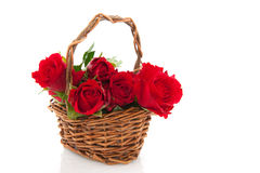 Basket red roses Royalty Free Stock Photography