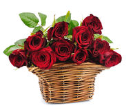 Basket red roses Stock Photos