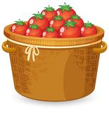 A basket of red tomato royalty free illustration