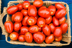 Basket of red tomatoes at the market Royalty Free Stock Images