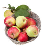 Basket with red and yellow apples isolated Royalty Free Stock Image