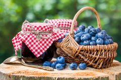 Basket with ripe blueberries and jam Royalty Free Stock Image