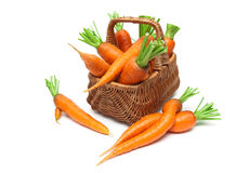 Basket with ripe carrots close-up isolated on white background Stock Image