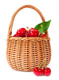 Basket of ripe cherries Stock Photos
