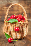 Basket of ripe cherries Stock Images