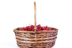 Basket with ripe cherry. Isolated on white Stock Photos