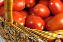 Basket with ripe fresh tomatoes Royalty Free Stock Photos