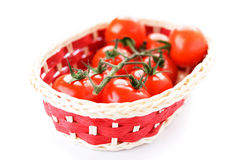 Basket with ripe tomatoes Stock Image