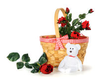 Basket of Romance. A gingham-trimmed basket of roses and a small, white teddy bear.  Isolated on white Stock Image