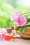 Basket with rose hip flowers and bottles of oil Royalty Free Stock Photography