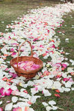 Basket with rose petals in a path of rose petals Royalty Free Stock Photo