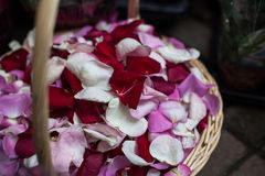 Basket with rose petals Stock Photos