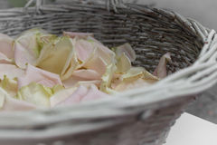 Basket of rose petals Royalty Free Stock Photos