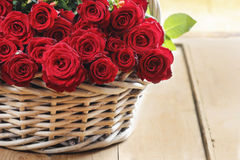 Basket of roses Stock Images