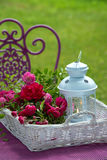 Basket with roses Stock Images