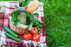 Basket Rustic Raw Fresh Food on Green Grass Plaid Stock Photo