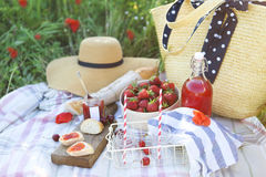 Basket, sandwiches, plaid and juice in a poppy field. Royalty Free Stock Photo