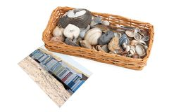 Basket with seashells and pebbles Royalty Free Stock Image