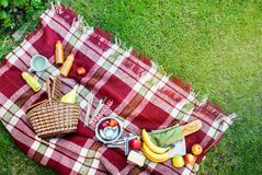 Basket Setting Food Fruit Checkered Plaid Picnic Grass Stock Image