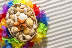 Basket of shells, sand Royalty Free Stock Images