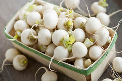 Basket of small turnips Stock Photography