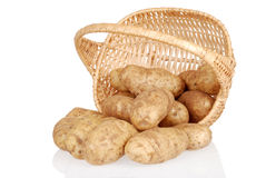 Basket of spilled potatoes Royalty Free Stock Photo