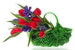 Basket spring flowers Royalty Free Stock Image