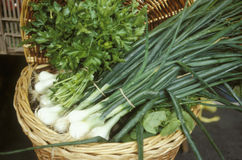 Basket of spring onions and parsley Stock Photo