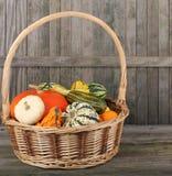 Basket of Squash Stock Photos