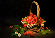 Basket with strawberries. Basket with fresh strawberries. Light painting Stock Photos