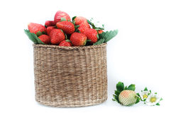A basket of strawberries Stock Photography