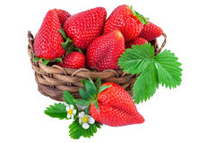 Basket of strawberries closeup. Isolated on white background. Royalty Free Stock Photography