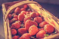 Basket of strawberries. Full basket of red strawberries Royalty Free Stock Image