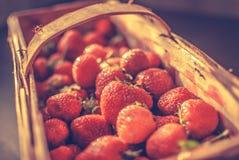 Basket of strawberries. Full basket of red strawberries Royalty Free Stock Image