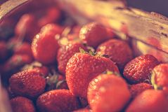 Basket of strawberries. Full basket of red strawberries Stock Photos