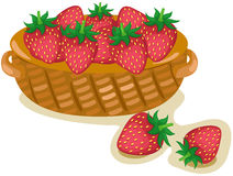 A basket of strawberries. Illustration of isolated a basket of strawberries on white Royalty Free Stock Images