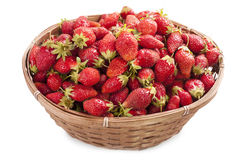 Basket of strawberries isolate Royalty Free Stock Photo