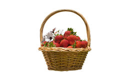 Basket with strawberries isolated Royalty Free Stock Image