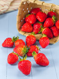 Basket with strawberries spilling on a table. Basket with strawberries spilling on a wooden table Royalty Free Stock Photos