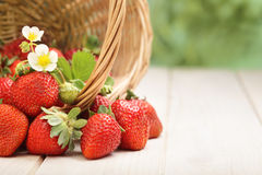 Basket with strawberry Royalty Free Stock Images