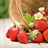 Basket with strawberry on table Stock Photo