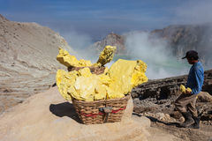 Basket with sulfur Stock Photography
