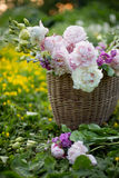 Basket with summer flowers in the field in sunset light Stock Photography