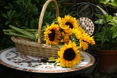Basket of Sunflowers on mosaic table Royalty Free Stock Image
